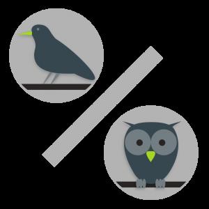 lark_owl_trans